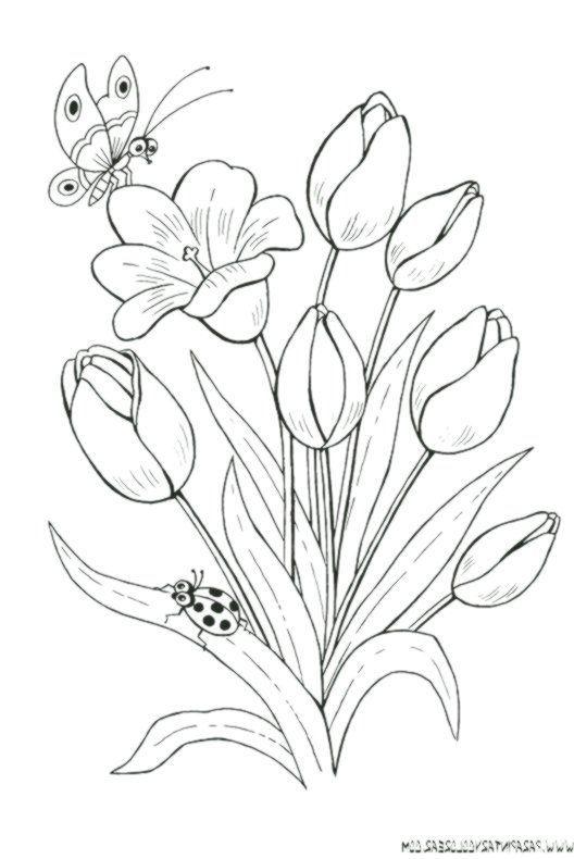Dibujos Para Pintar Flores De Tulipanes 019 Dibujosparapintardeflorestulipane Bordadoamanobolsos Blumenzeichnungen Blumen Zeichnung Muster Malvorlagen