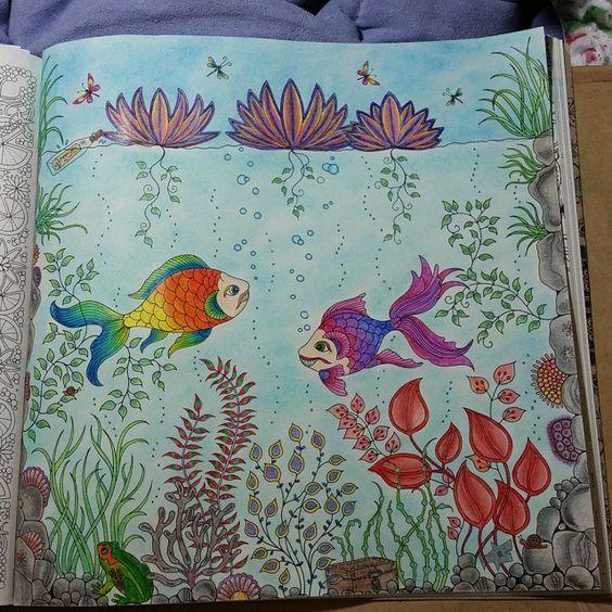 #colorindolivrostop #coloringbook #jardimsecretoinspire #jardimsecreto #coreslindas #florestaencantada #secretgarden
