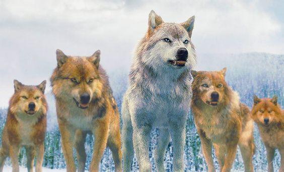 10 φανταστικά ζώα που κυριαρχούσαν στην γη.. μην το χάσεις