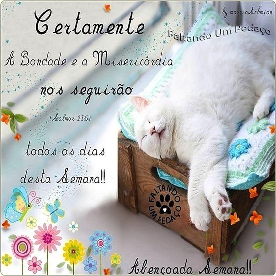 Boa semana! @faltandoumpedaco