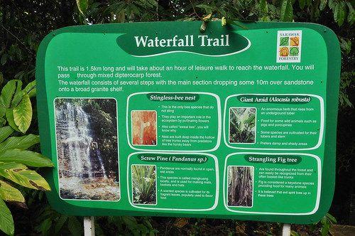 Adults Is Rm10 Kubah National Park Waterfall Kubah 003 Kuching Waterfall Waterfall Trail