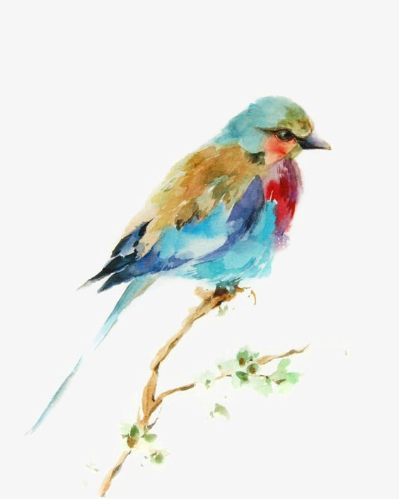 Birds Watercolor Bird Creative Birds Sparrow Png Transparent