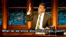 """He made late night television educational. 