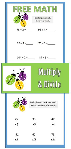 math worksheet : spring math freebie  ladybug themed long ision  : Long Division And Multiplication Worksheets