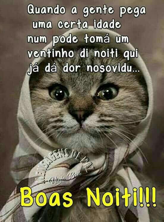 Pin De Maria Fatima Em Quotes Imagens Engraçadas De Boa