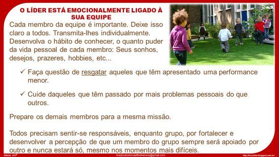 Brazil SFE