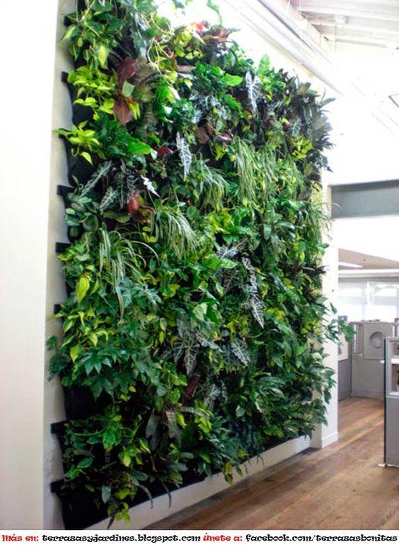 Pinterest el cat logo global de ideas - Como hacer un muro verde ...