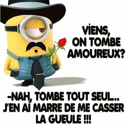 Viens on tombe amoureux ? nah , tombe tout seul j'en ai marre de me casser  la gueule !!! #lol #mdr #humour #rire #… | Blagues mignonnes, Mèmes drôles,  Minion humour
