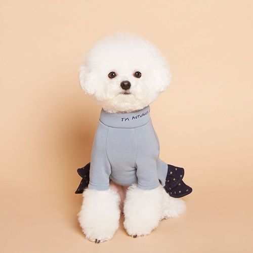 Dognpet Com Online Pet Store Dog Pajamas Cat And Dogs Pet Store