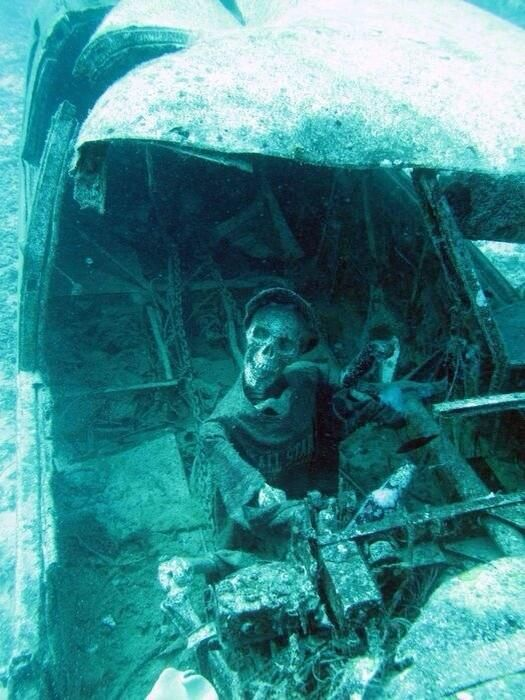 underwater airplane wreckage 1967 well doesnt he look