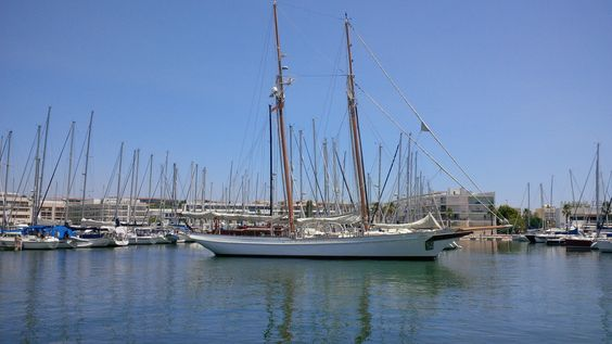 From new speed boats to old sailing boats, the Marina has them all.