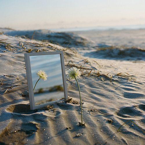 Ningún hombre tiene la oportunidad de disfrutar de un éxito permanente hasta que empieza a buscar en el espejo la verdadera causa de todos sus errores.- Napoleón Hill