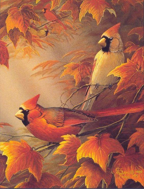 ~ Autumn Cardinals ~ by Wildlife Artist, Sam Timm ~: