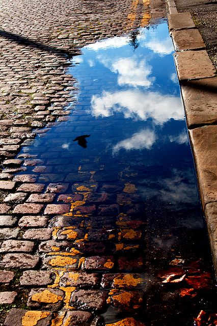 Otherworldly....Clouds in puddle - amazing.