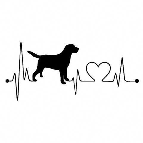 Aww Dogsofinstagram Dailyfluff Dailyfluff Bestwoof Puppy