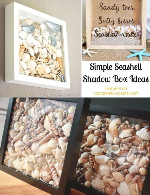 Simple Seashell Shadow Boxes Shadow Box Display Idea For Those