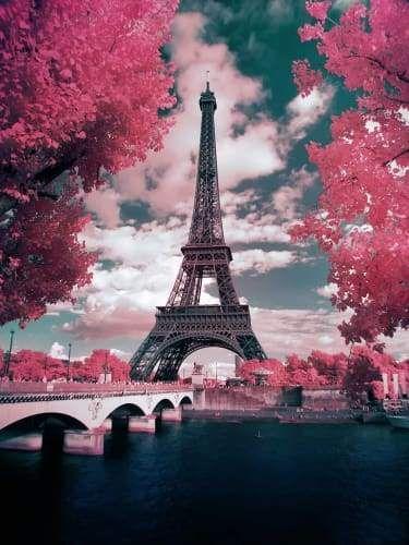 Pink Parisian Trees Paris Wallpaper Eiffel Tower Beautiful Landscapes Blue eiffel tower wallpaper hd