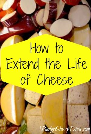 How to Extend the Life of Cheese