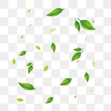Ruchnoj Png Vektory Psd I Png Dlya Besplatnoj Zagruzki Pngtree In 2020 Green Plants Leaf Clipart Plant Leaves