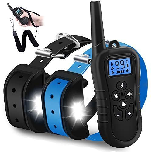 Wdfzone New 2019 Dog Training Collar With Remote Training