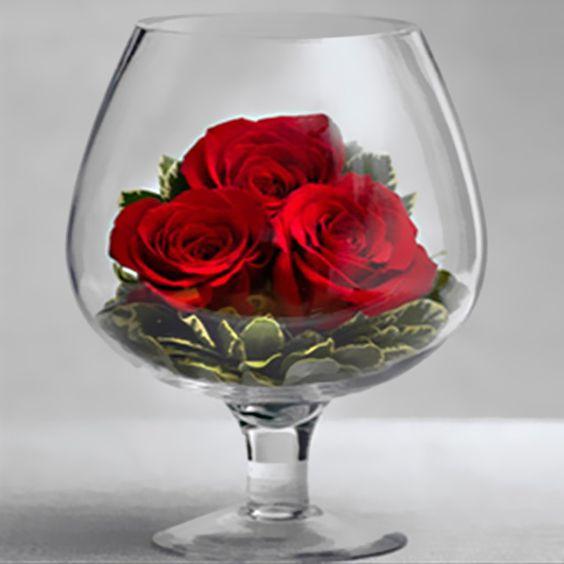 Todo con las flores: decorar, crear, degustar, cuidar...................: Poinsettias, flor de pascua, flor de Navidad roja y blanca