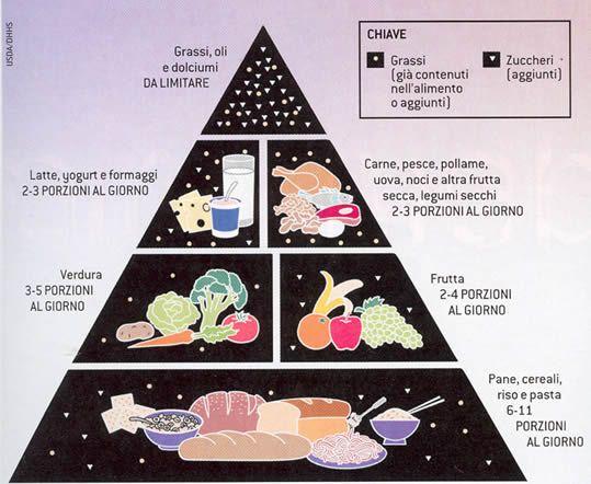 VECCHIA PIRAMIDE ALIMENTARE All'inizio degli anni 90' negli Stati Uniti è stata diffusa la cosiddetta piramide degli alimenti, con lo scopo di fornire una semplice guida nella scelta del cibo e delle giuste porzioni. I cibi presenti alla base del poligono erano quelli da consumare in maggiore quantità e, mano a mano che si saliva verso l'apice della piramide, occorreva diminuire l'apporto dei vari alimenti rappresentati in figura.