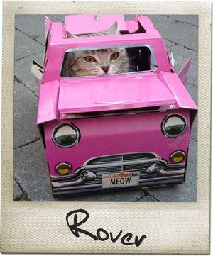 Proposed in the overseas direct import of cats and interior design of the cat Goods | Nekoyuni - classic car type cat house Suck UK