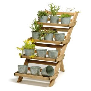 Gardens Plant Stands And Garden Plants On Pinterest