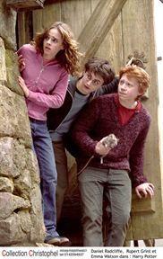 Harry Potter Et Le Prisonnier D Azkaban Film Harry Potter Et Le Prisonnier D Azkaban Photo Daniel Radcliffe Emma Watson Rupert Grint Daniel Radcliffe Harry Potter Images Harry Potter
