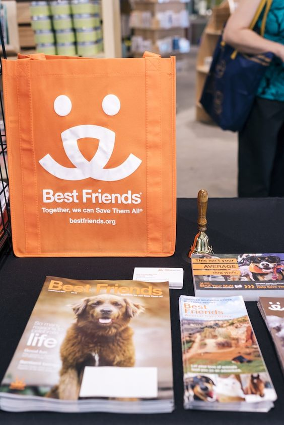 UO Happenings: Best Friends Animal Society Adoption Recap - Urban Outfitters - Blog