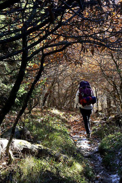 ridge mountains pinterest - photo #32