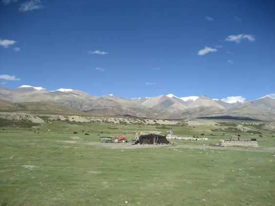 Tibet, south-west, nomads between Toling and Darchen
