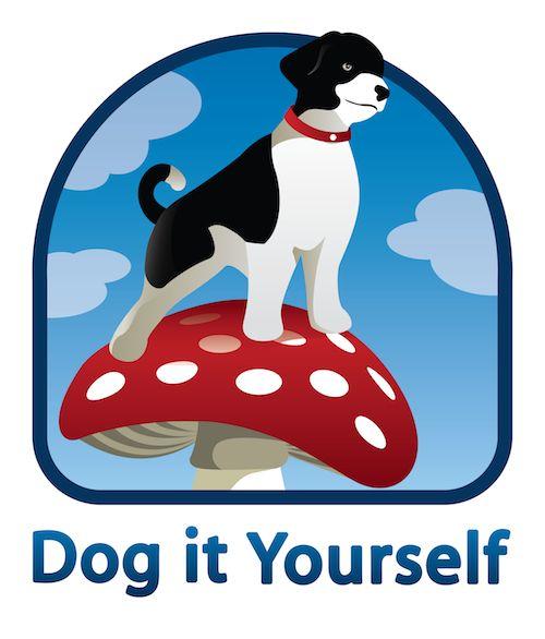 Anleitungen für Hunde (Spiele, Intelligenzspielzeuge, tricks etc)
