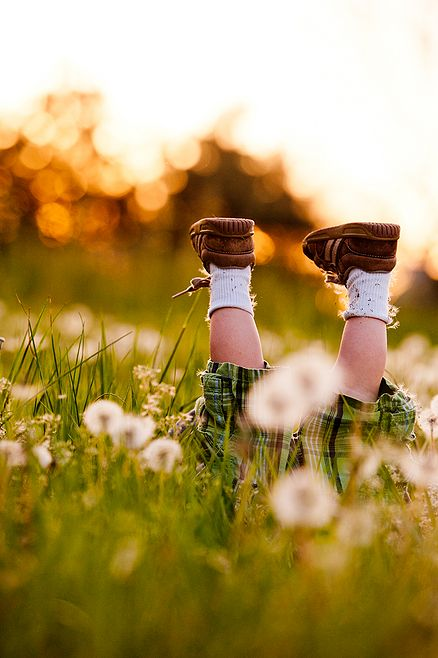 Graeme head over heels in Dandelions by Danielle Vennard: