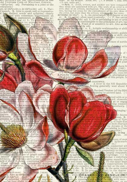 Die alte Seite ist aus einem zerrissenen Jahrgang Wörterbuch geborgen. Ich habe verbessert und dieses wunderbare alte Magnolie-Kunstwerk auf die alte