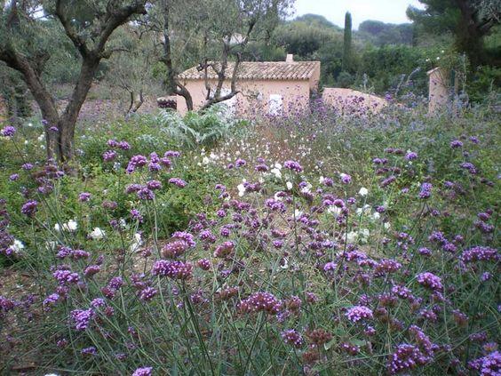 Giardini « Cappellini giardinieri