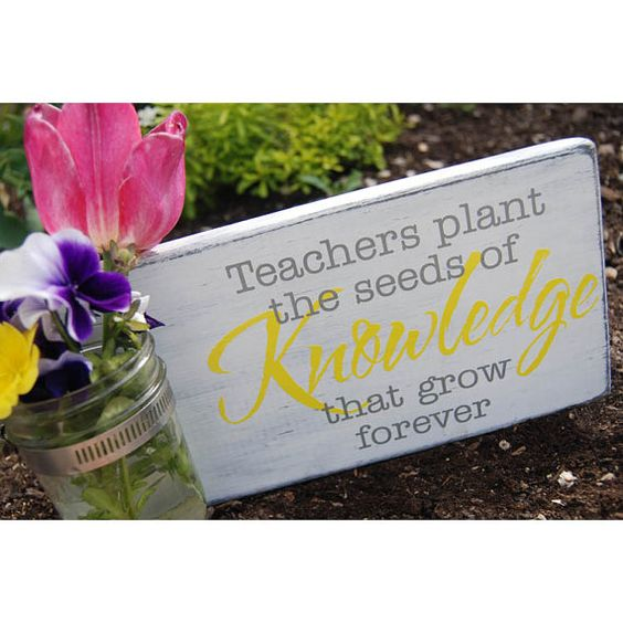 Quotes About Teachers Planting Seeds: Vinyls, Vinyl Decals And Teaching On Pinterest
