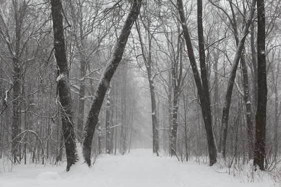 A sneak peek at the winter weather forecast for 2016-2017 is out, and Michael Steinberg explains the winter weather predictions for the United States and Canada, from The Old Farmer's Almanac.