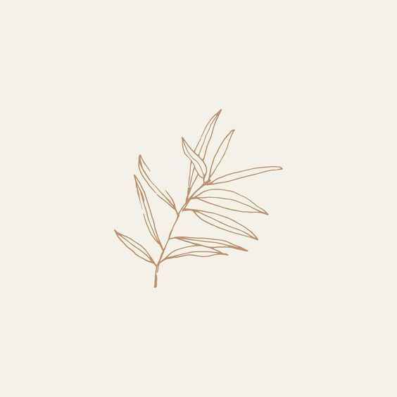 Leaf Sketch Art Aesthetic Botanical Illustration Illustration Floral Doodle