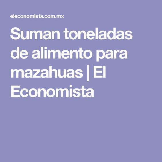 AMERICAN EXPRESS entregò alimento para mazahuas por tercera ocasiòn   El Economista