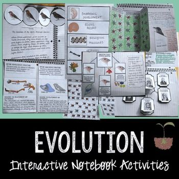 Evolution Interactive NotebookThis is a bundle of activities that are designed for use with an interactive notebook. The following activities are included:1. Introduction to Evolution Bellringer 2. Galapagos Islands Reference Maps3. Darwin's Influences Map 4.: