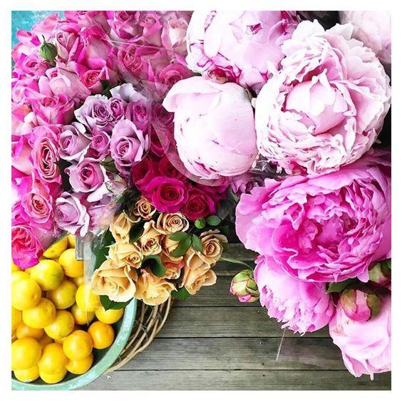 Saturday morning blooms