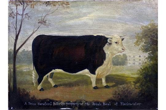 ENGLISH NAIVE SCHOOL A Prize Hereford Bull, The Property of Mr. Uriah Heel of Blackwater Oil on