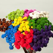 Dried Floral Button Flowers - Decorative Floral Buttons