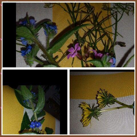 Cutting flowers at Chadwell Preschool