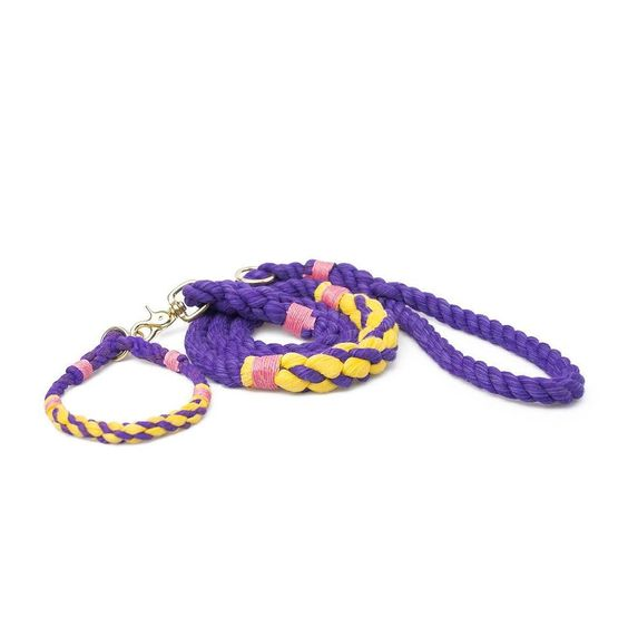 Good morning gang  We love our #lassolovers creativity  This purple & yellow #lassocruisercollar & #lassocruiserleash is absolutely gorgeous  by lassodogs