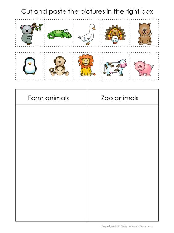 animals sorting set zoo animals farms and in color. Black Bedroom Furniture Sets. Home Design Ideas