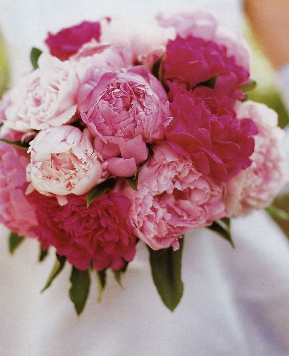 peonies - my color palette would be a little different