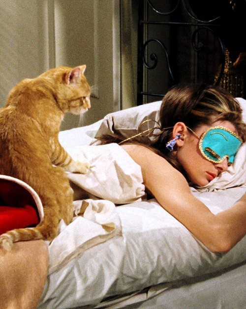 #AudreyHepburn sleeping with her feline co-star named Cat in the scene of Breakfast at #Tiffany's 1961.