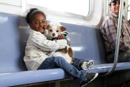 Susie The Dogspreads love and happiness on a Bronx-bound 6 train.